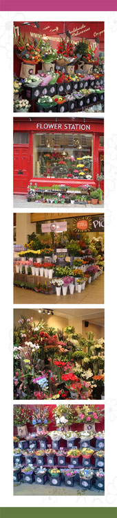 few pictures of our florist shops
